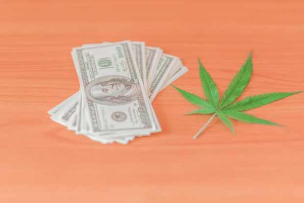 marijuana leaf with stack of cash