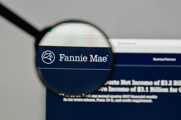 Fannie Mae website logo.
