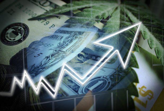 growning marijuana economy