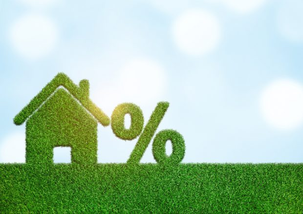 figure of a house and a percentage sign sitting on the grass