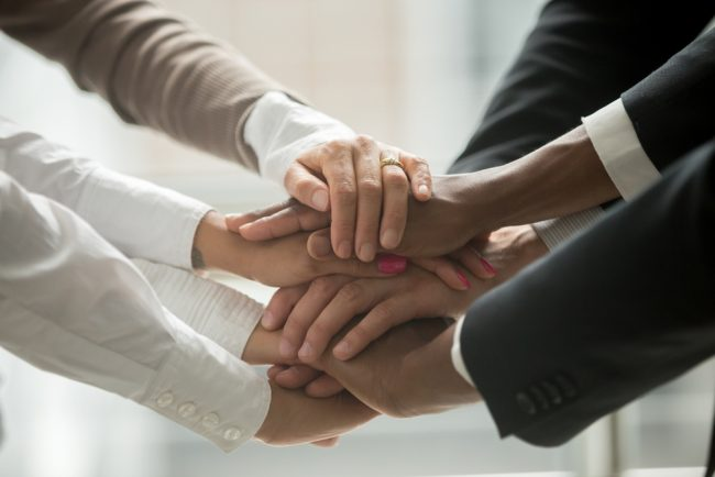 Hands of diverse team
