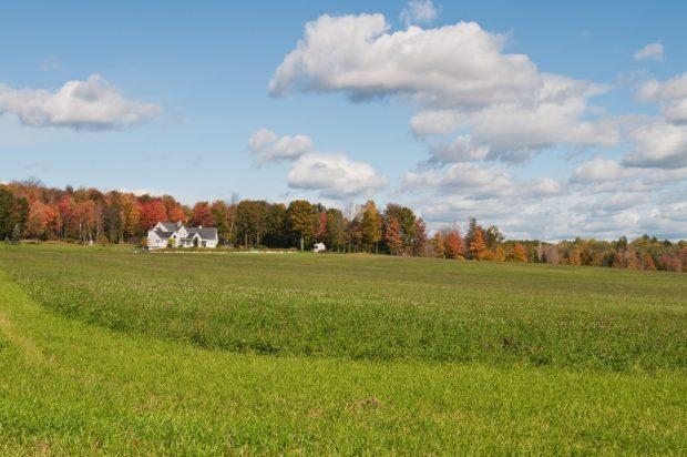 Farm in Pittsfield, Maine
