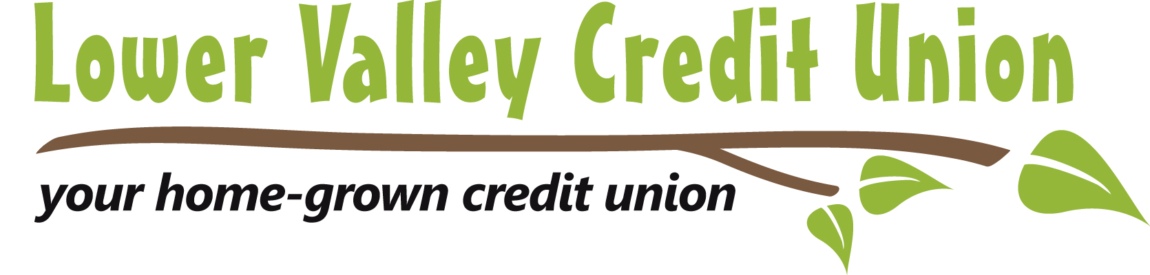 Image result for lower valley credit union