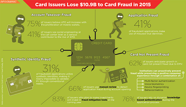 card fraud infographic